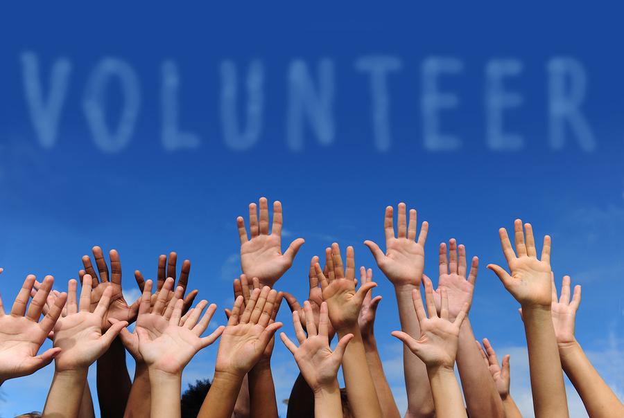 L (Volunteer)